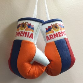 Tri-Color Armenia Mini Boxing Gloves