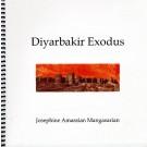 Diyarbekir Exodus